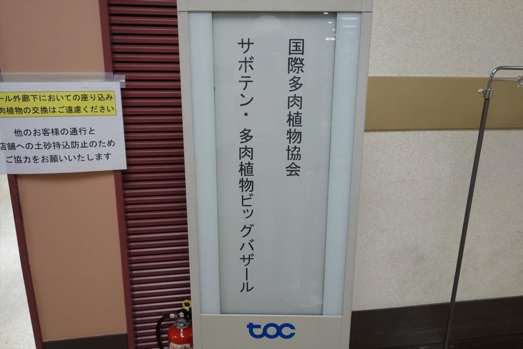 f:id:noazamino:20170612215104j:plain