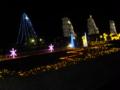 京都新聞写真コンテスト 植物園イルミネーション