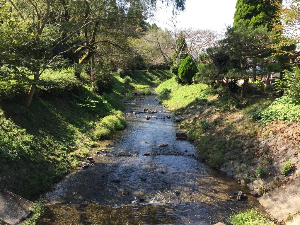 みどり農園の川