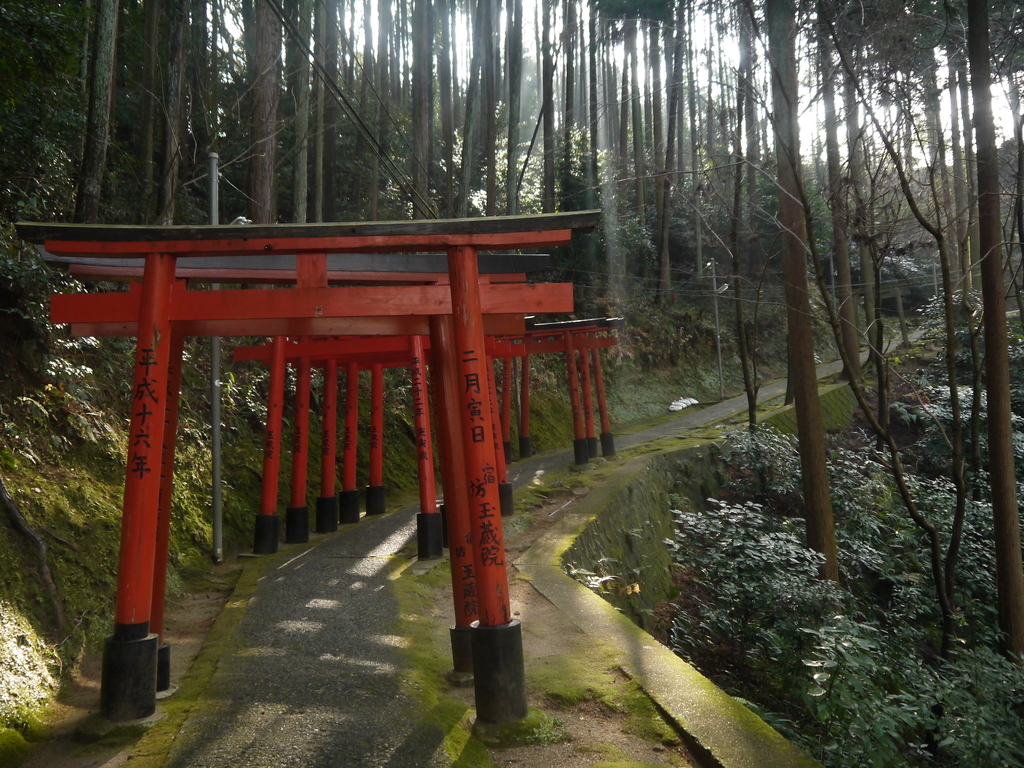 信貴山  劔鎧語法堂(けんがいごほうどう) 道のり 鳥居