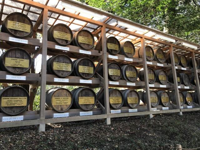 ワイン樽 明治神宮