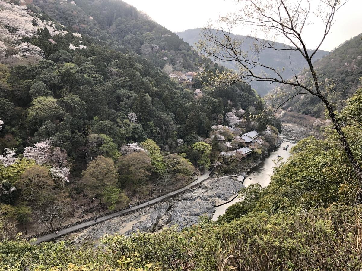 嵐山竹林 京都嵐山 亀山公園