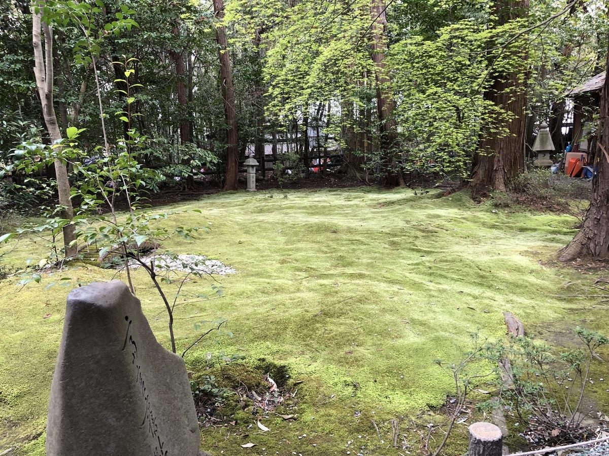 野宮の苔 竹林 嵐山