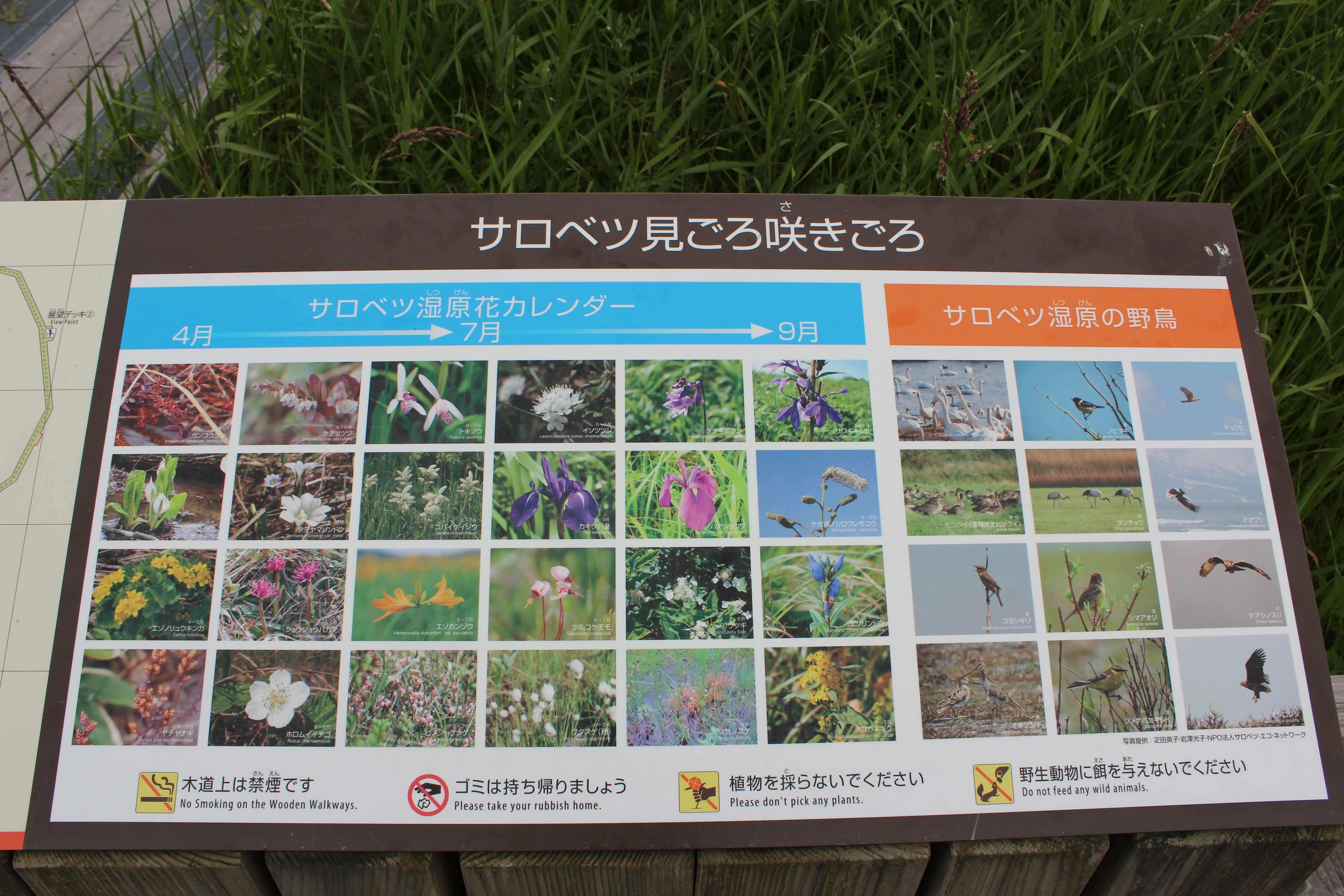 f:id:nobesuke:20170423182114j:plain