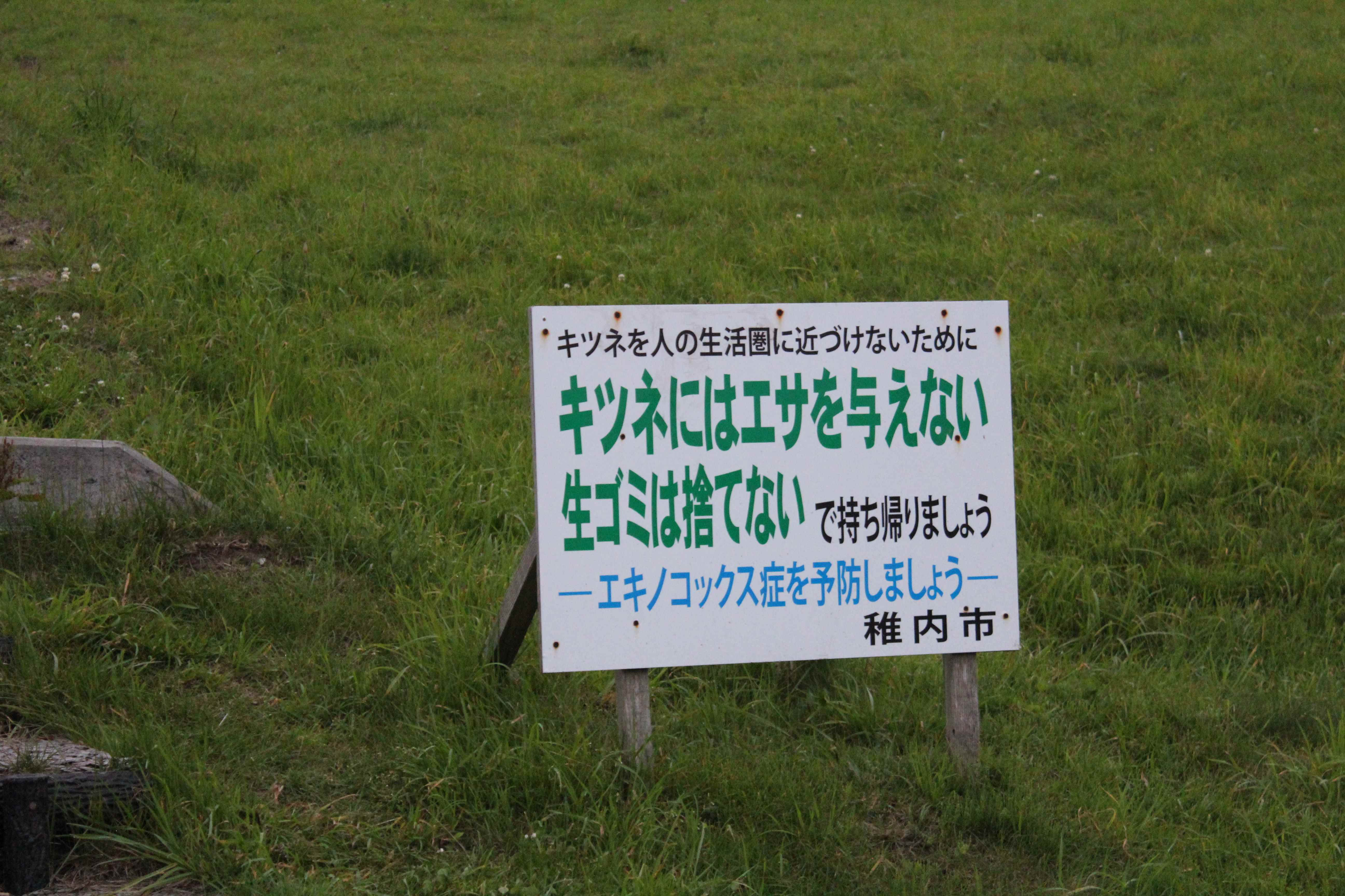 f:id:nobesuke:20170629175537j:plain