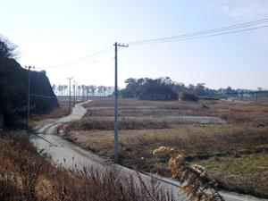 f:id:nobiru_harbor:20140124103824j:image