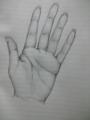 指が長すぎたー…気がする