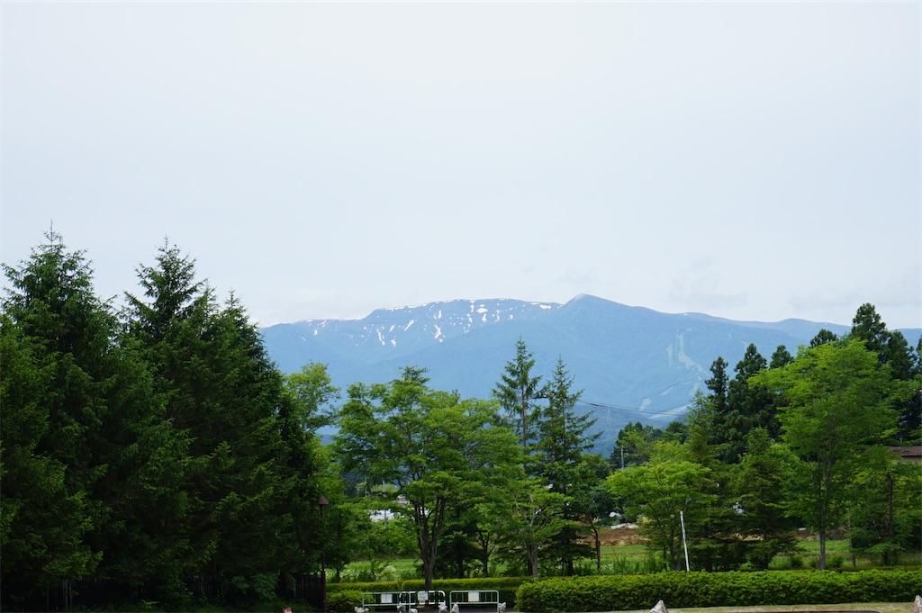 f:id:nobiyuki0807:20200614165145j:image