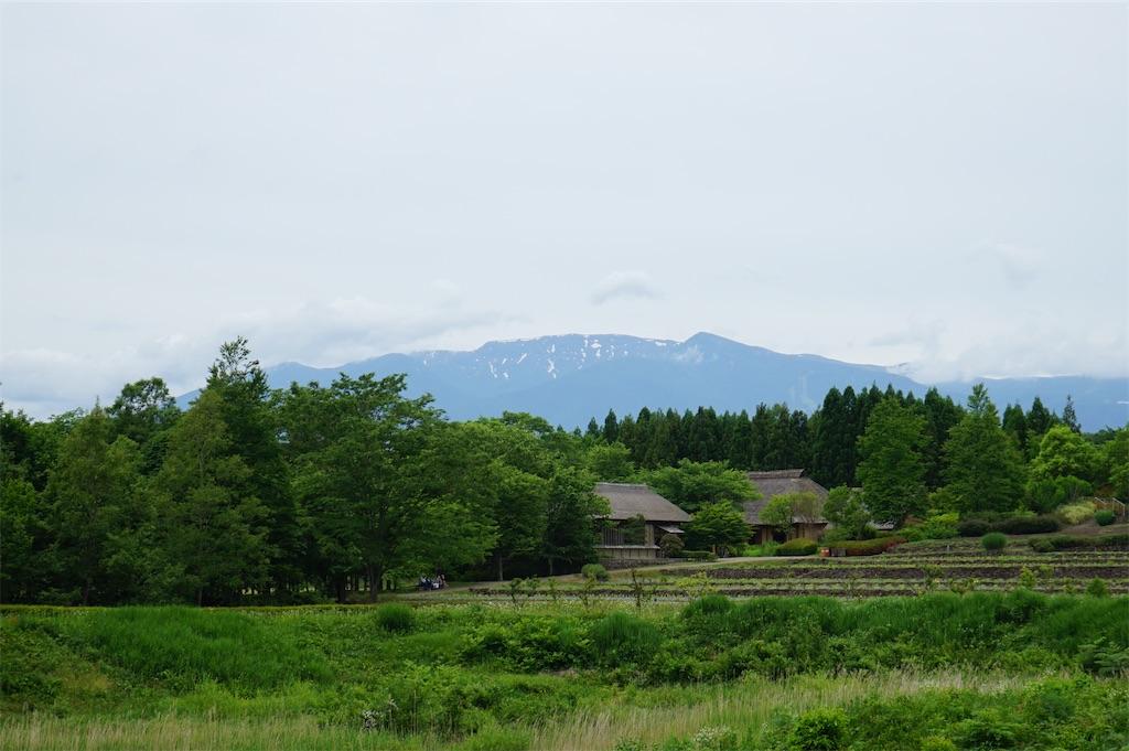 f:id:nobiyuki0807:20200614182823j:image