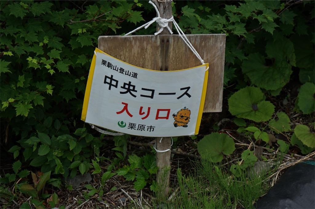 f:id:nobiyuki0807:20200703220347j:image