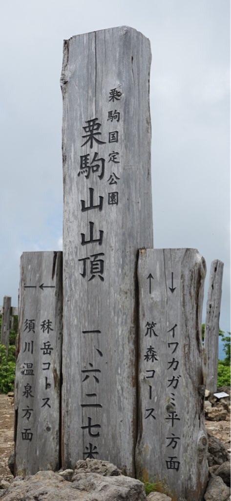 f:id:nobiyuki0807:20200703223030j:image