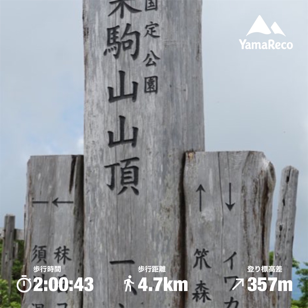 f:id:nobiyuki0807:20200703224915j:image