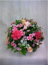 f:id:noblekanazawa70:20101107133142j:image