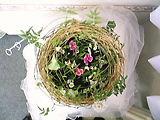 f:id:noblekanazawa70:20101107140749j:image