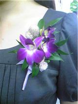 f:id:noblekanazawa70:20101108201754j:image