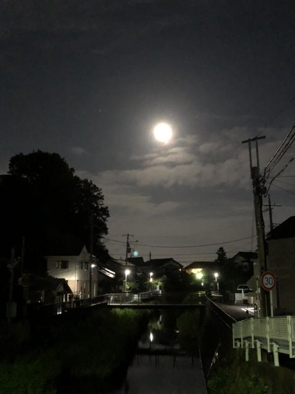 f:id:noblekanazawa70:20180629101430j:image:w360