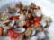 アサリ、ひよこ豆、トマトのサラダ