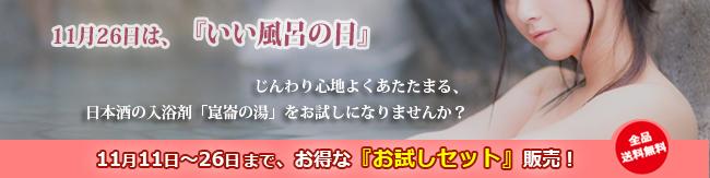 f:id:noboru0324:20161111164152p:plain