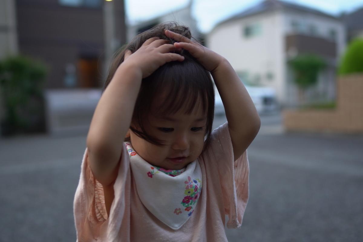 f:id:noborunoblog:20210607213753j:plain