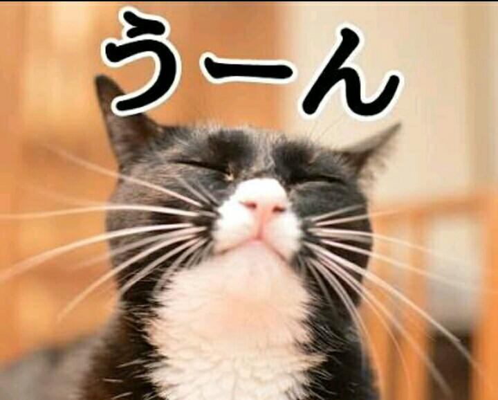 f:id:nobu2394:20180727070139j:plain