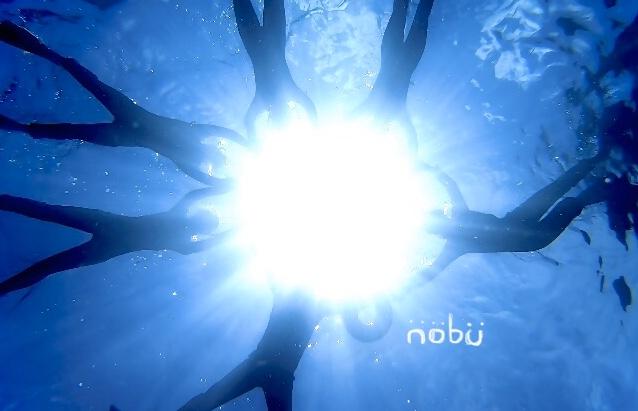 f:id:nobu29181:20200619183001j:plain