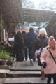 [伏見稲荷大社][20110101]雪舞う初詣