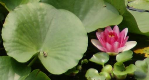 f:id:nobubachanpart3:20111209201234j:image