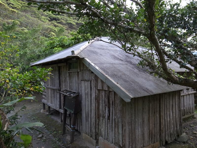田中一村終焉の家1