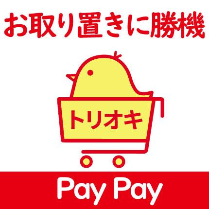 ビックカメラの「お取り置き+店舗PayPay支払い」がスマートか / あの商品はトリオキできたのか【ネットまとめ】ペイペイ , カードレビューズ