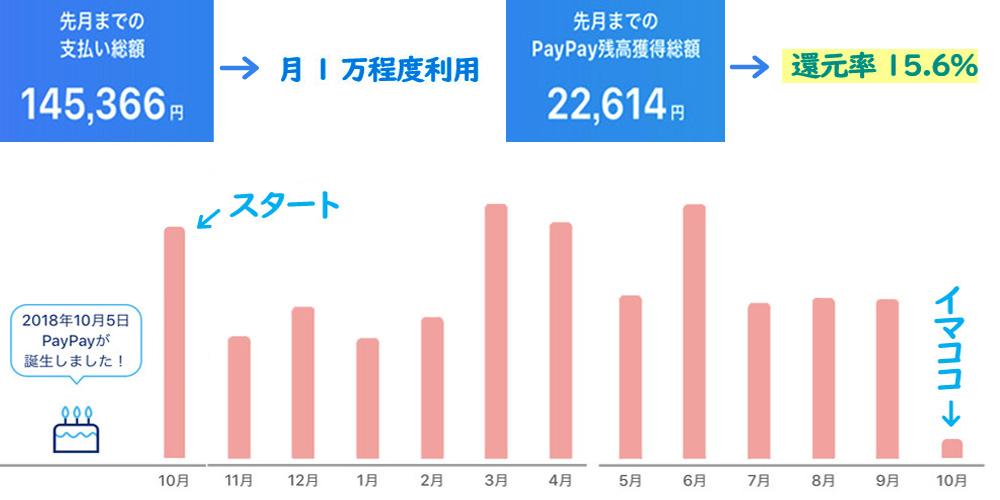 PayPayを1年間の利用したデータ