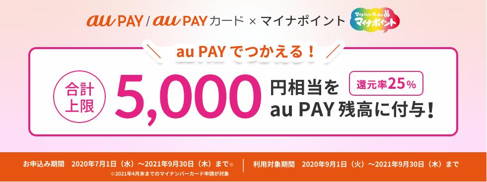 f:id:nobujirou:20210405160951j:plain