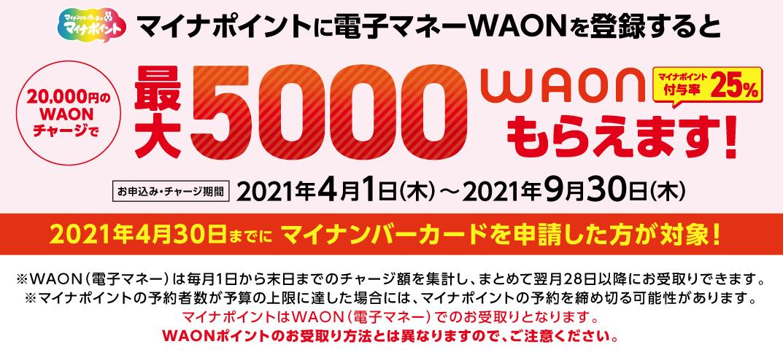 f:id:nobujirou:20210405161747j:plain
