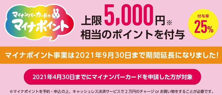 f:id:nobujirou:20210405161954j:plain