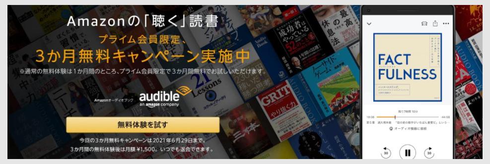 f:id:nobujirou:20210531174714j:plain