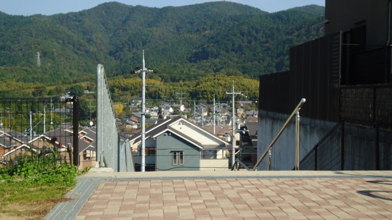 f:id:nobumichi02:20101106131557j:image:h150