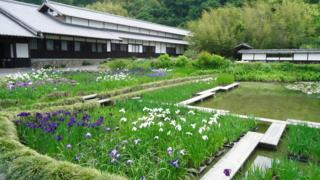 f:id:nobumichi02:20120519104250j:image