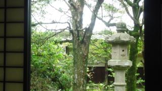 f:id:nobumichi02:20120519113643j:image:h150
