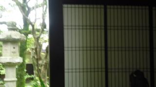 f:id:nobumichi02:20120519113907j:image:h150