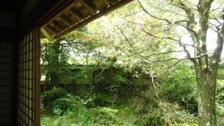 f:id:nobumichi02:20120519115236j:image:h150