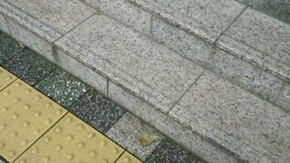 f:id:nobumichi02:20120623144850j:image:h150