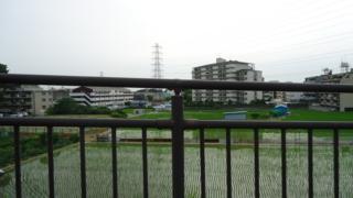 f:id:nobumichi02:20120623161000j:image:h150