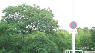 f:id:nobumichi02:20120623171120j:image:h150