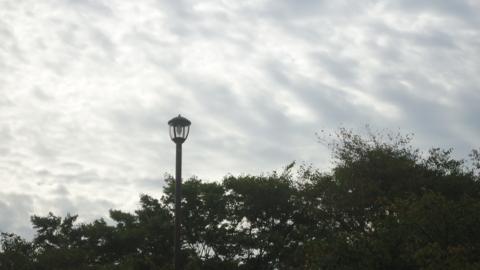 f:id:nobumichi02:20121006083209j:image:h150