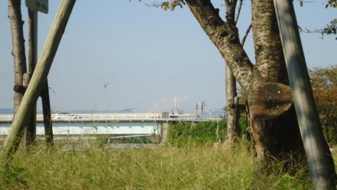 f:id:nobumichi02:20121020145131j:image:h150