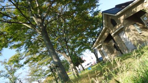 f:id:nobumichi02:20121020145304j:image:h150