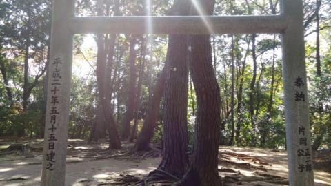 f:id:nobumichi02:20121118113903j:image:h150