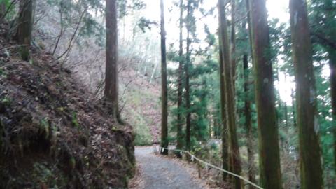 f:id:nobumichi02:20121124094139j:image:h150
