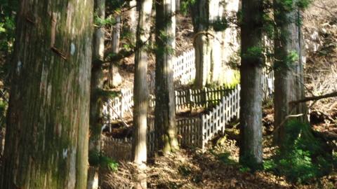f:id:nobumichi02:20121124095746j:image:h150