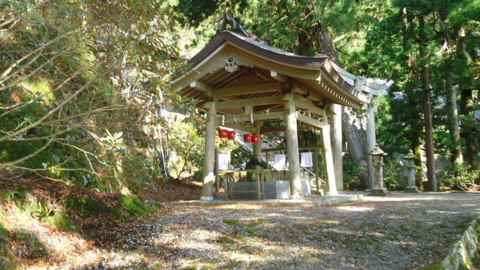 f:id:nobumichi02:20121124100305j:image:h150