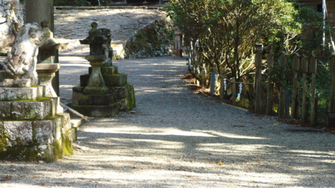 f:id:nobumichi02:20121124102114j:image:h150